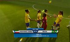 ギニア-ブラジル